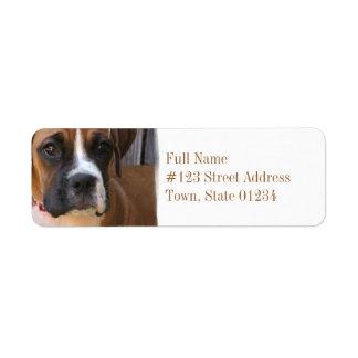 Boxer Rescue Return Address Label