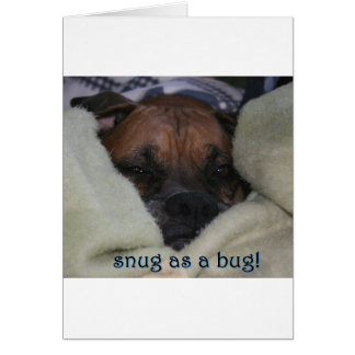 Boxer:  Snug as a Bug Card