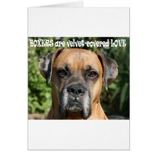 Boxer:  Velvet-covered Love Card