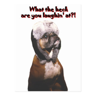 Boxer: What the Heck! Postcard