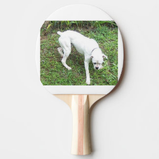 Boxer White Puppy full Ping Pong Paddle