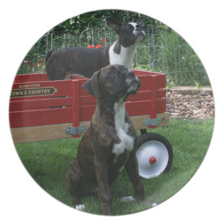 Boxers and Bostons: Little Sweethearts Party Plate