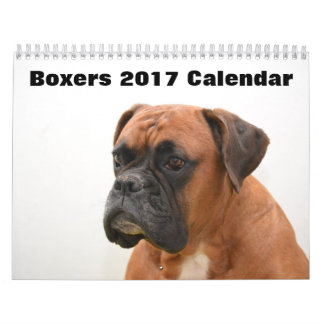 Boxers Dogs 2017 Wall Calendars