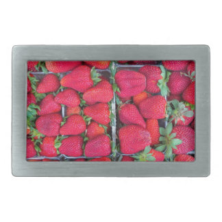 Boxes filled with red strawberries rectangular belt buckles