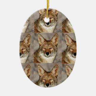 boxes of coyotes ceramic ornament
