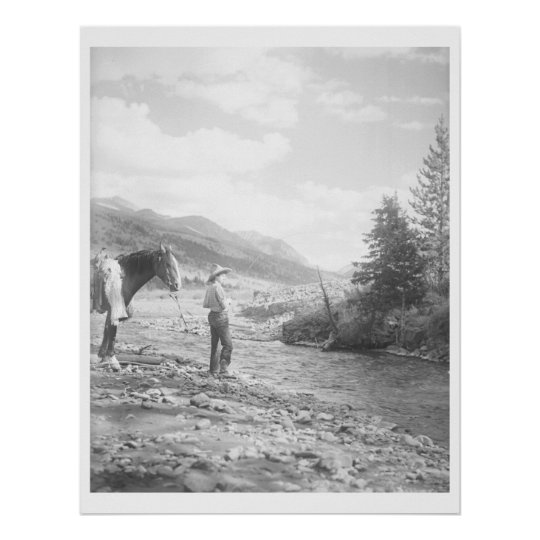 Boy fly fishing. poster