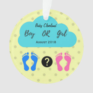 Boy or Girl Baby Announcement Ornament