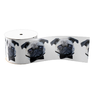 Boy Pug dog 3' grosgrain ribbon