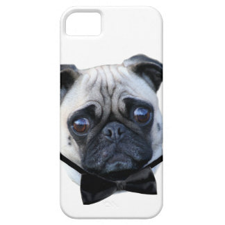 Boy pug dog iPhone 5 cover
