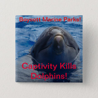 Boycott Marine Parks - Captivity Kills Dolphins! 2 Inch Square Button