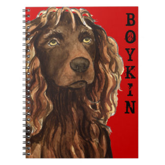 Boykin Spaniel Color Block Notebooks