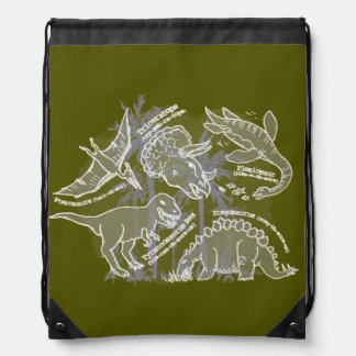 Boys how do you say dinosaur green drawstring bag