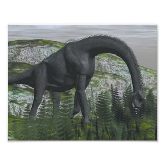 Brachiosaurus dinosaur eating fern - 3D render Photo Print