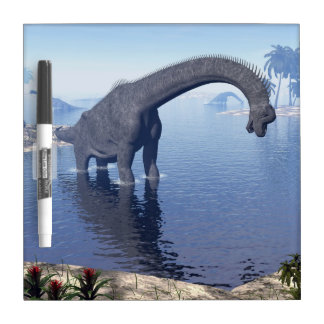 Brachiosaurus dinosaur in water - 3D render Dry Erase Board