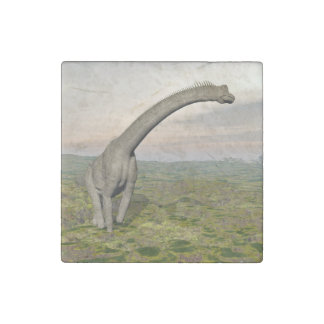 Brachiosaurus dinosaur walking - 3D render Stone Magnets