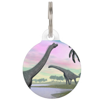 Brachiosaurus dinosaurs in nature - 3D render Pet ID Tag