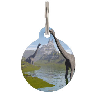 Brachiosaurus dinosaurs in water - 3D render Pet Name Tags
