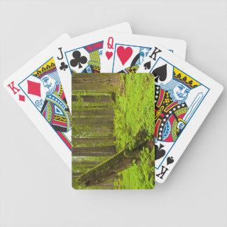 Bracken fern and redwood sorrel poker deck