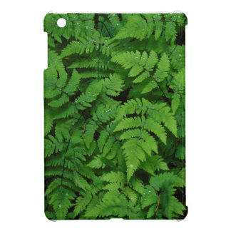 Bracken fern with rain drops, Washington State Case For The iPad Mini