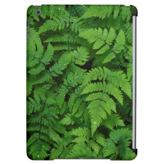 Bracken fern with rain drops, Washington State iPad Air Cases