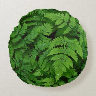 Bracken fern with rain drops, Washington State Round Pillow