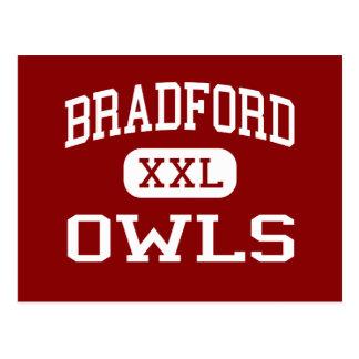 Bradford - Owls - Area - Bradford Pennsylvania Postcard