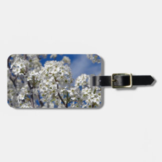 Bradford Pear Blooms Luggage Tag