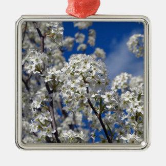 Bradford Pear Blooms Metal Ornament