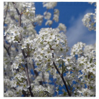 Bradford Pear Blooms Napkin