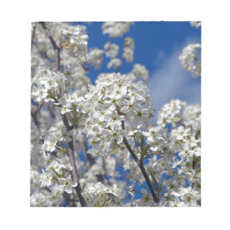 Bradford Pear Blooms Notepads