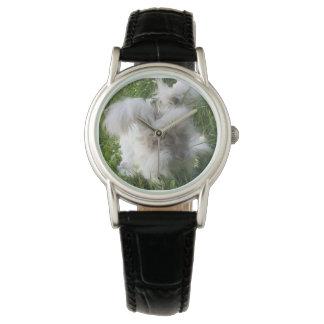 """Bradley"" English Angora Rabbit Watches"