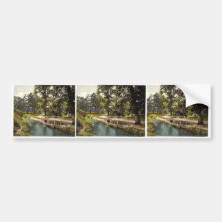 Bradley Woods, Newton Abbott, England rare Photoch Bumper Sticker