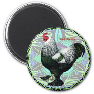 Brahma:  Fancy Dark Rooster 2 Inch Round Magnet