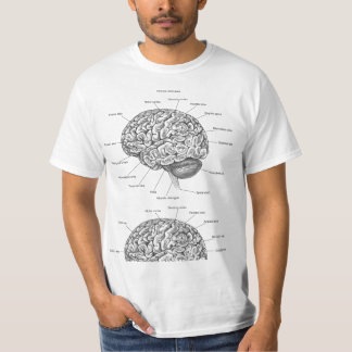 Brain Anatomy T-Shirt