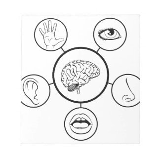 Brain and Five Senses Notepads