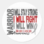 Brain Cancer Warrior Stickers