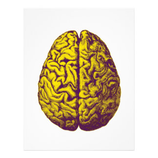 Brain Freeze Letterhead