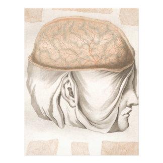 Brain One - Neuroanatomy Custom Letterhead