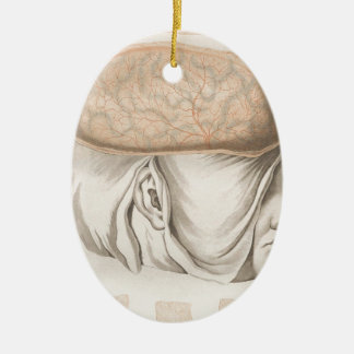 Brain One - Neuroanatomy Ceramic Oval Ornament