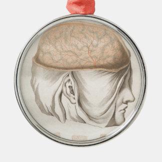 Brain One - Neuroanatomy Silver-Colored Round Ornament