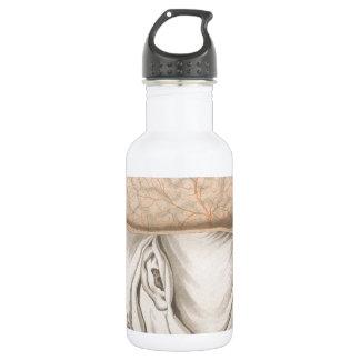 Brain One - Neuroanatomy 18oz Water Bottle