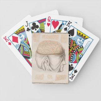 Brain One - Neuroanatomy Bicycle Playing Cards