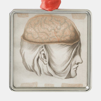 Brain One - Neuroanatomy Silver-Colored Square Ornament