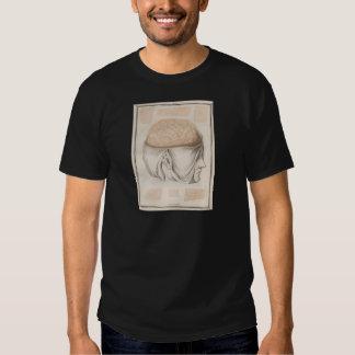 Brain One - Neuroanatomy Tshirts