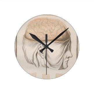 Brain One - Neuroanatomy Wallclock