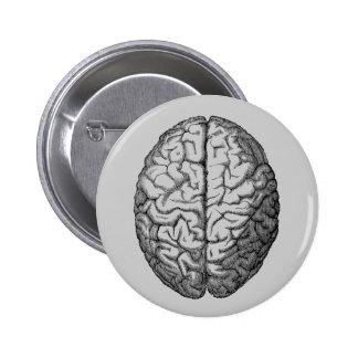 Brain Pinback Button