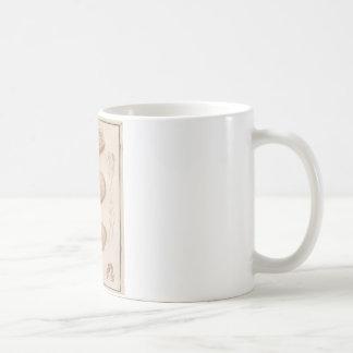 Brain Three - Neuroanatomy Classic White Coffee Mug