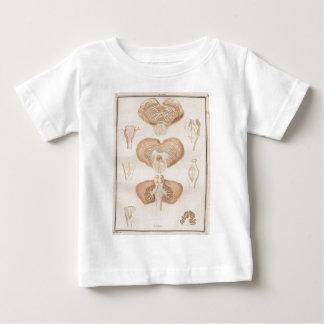 Brain Three - Neuroanatomy Tshirt