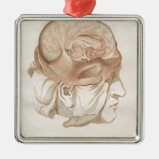 Brain Two - Neuroanatomy Silver-Colored Square Ornament