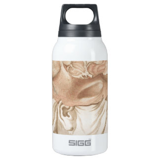 Brain Two - Neuroanatomy 10 Oz Insulated SIGG Thermos Water Bottle
